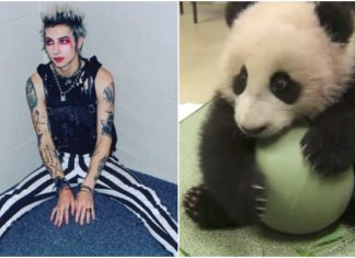 Remington Leith Panda