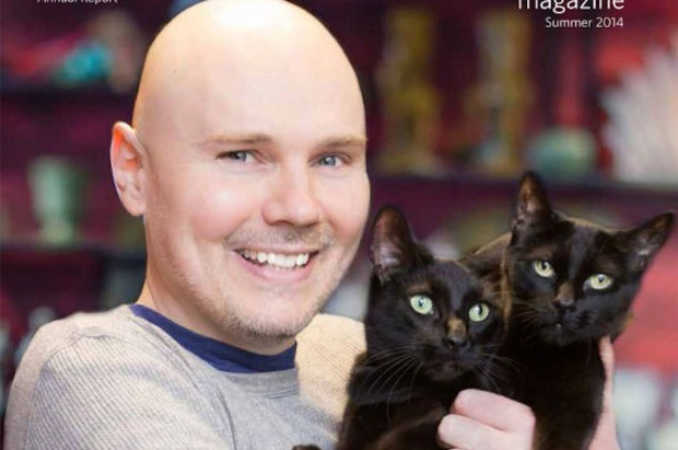 """Smashing Pumpkins now selling cat-themed """"F*ck You Anderson Cooper"""" T-shirts - Alternative Press"""