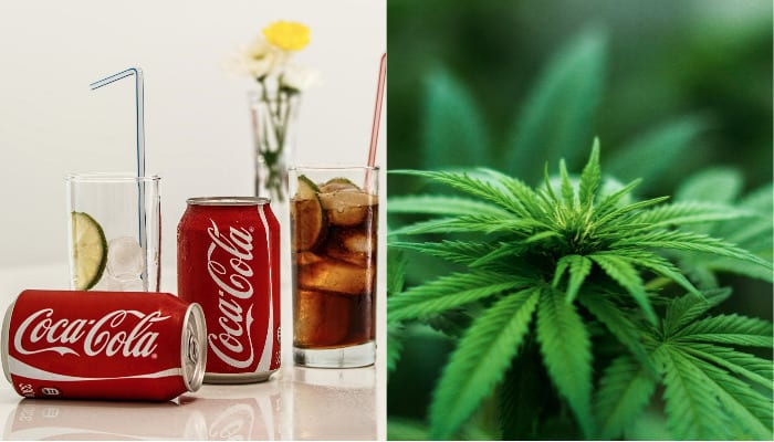 Bloomberg Reports Coca-Cola is Considering Cannabis Infused Beverages