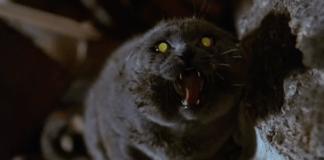 Get a sneak peak of Stephen King's 'Pet Sematary' remake