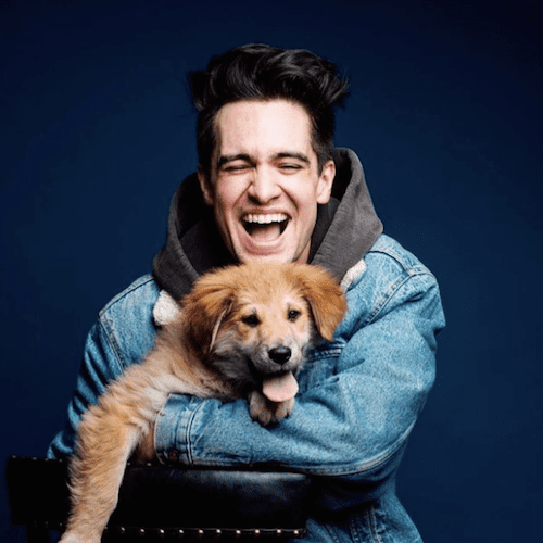 10.Nothing is more stylish than a cute smile. A puppy helps, too!