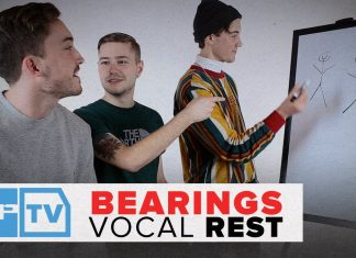 bearings vocal rest