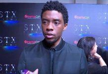 Avengers Endgame, Chadwick Boseman, Black Panther