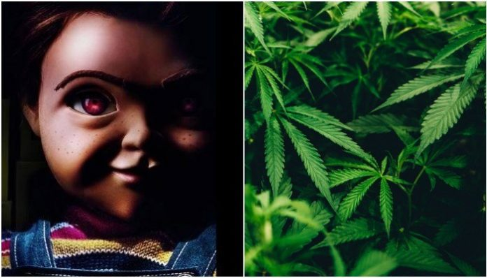 Child's Play, marijuana