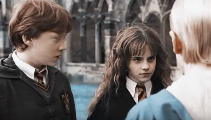 'Harry Potter' stars ponder how they'd fit into a wizarding world reboot in 2019