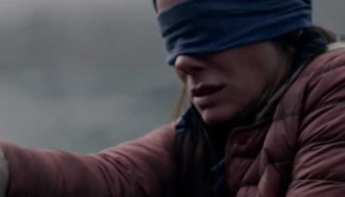 Bird Box' star Sandra Bullock wins MTV Award for Most Frightened