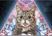 Lil bub passes away