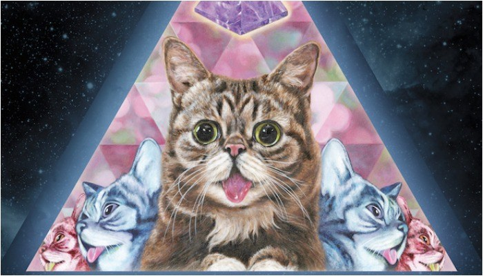 Lil bub passes away.'