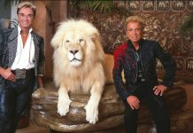 Tiger King Siegfried and Roy