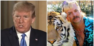 donald trump tiger king joe exotic