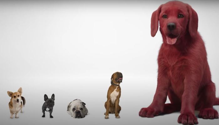 Fans horrified by first look at Clifford The Big Red Dog movie