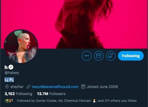 Halsey Twitter bio-min
