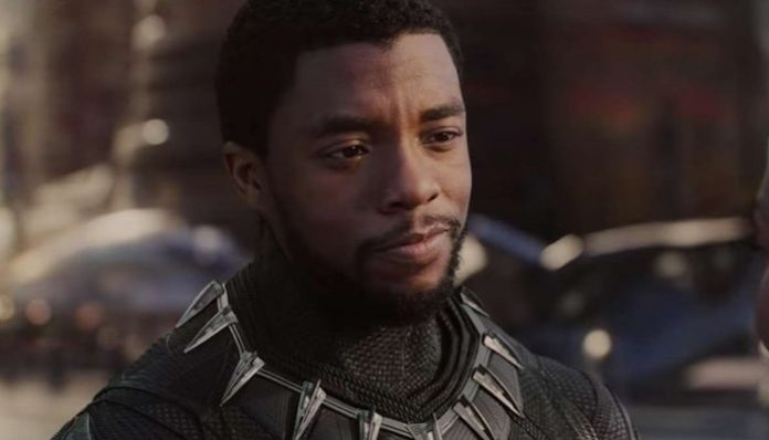 Black Panther Chadwick Boseman-min 2
