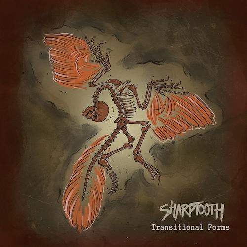SHARPTOOTH best 2020 albums